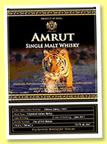 Amrut 5 yo (56.5%, OB, exclusive for Taiwan, oloroso, cask #3823, 600 bottles)