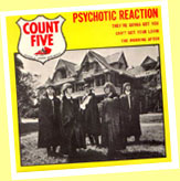 The Count Five